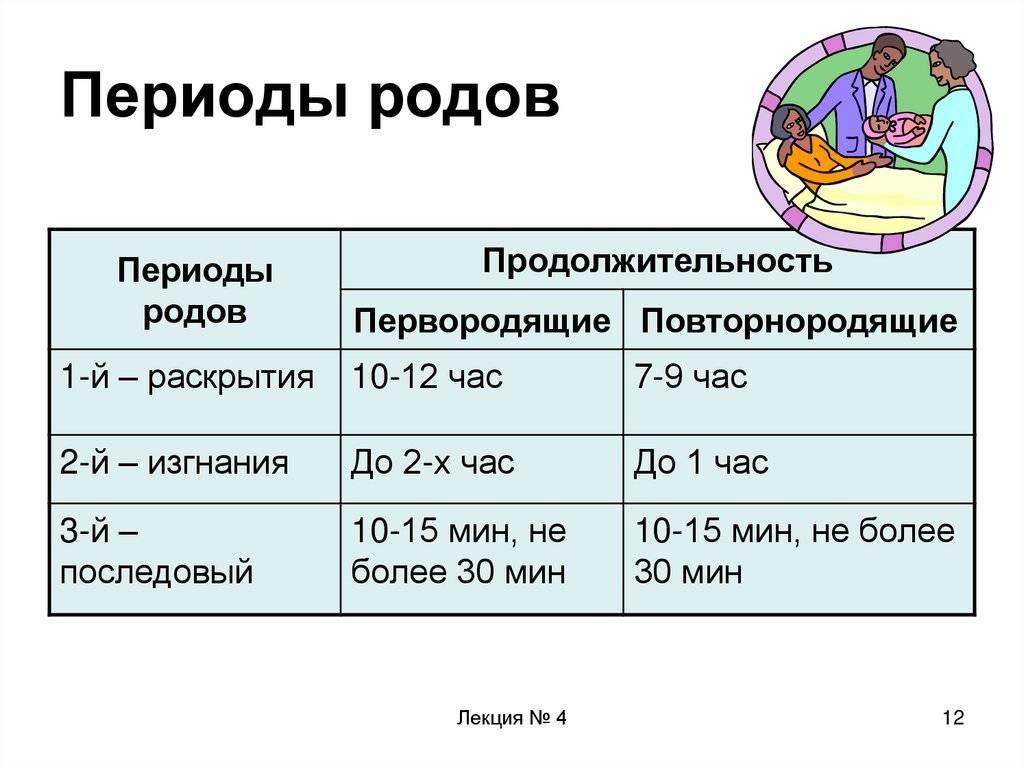 Санкт-петербургское государственное бюджетное учреждение здравоохранения «родильный дом №17»