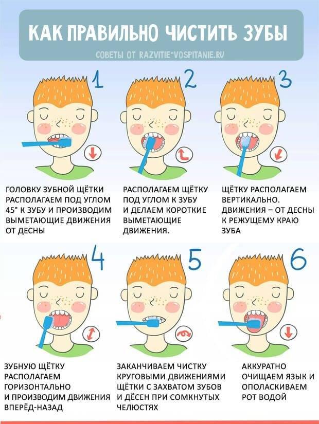 Рекомендации по гигиене полости рта у детей | студия-с