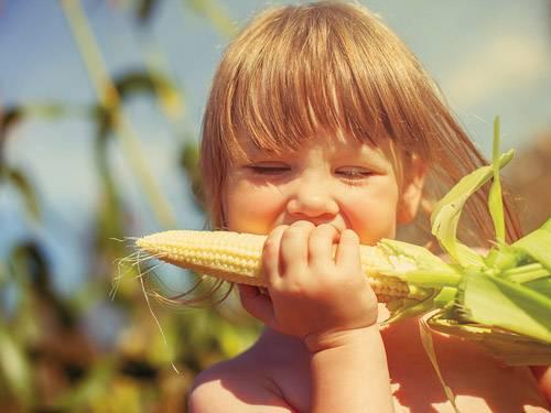 Можно ли детям кукурузу, и в каком виде? знакомим малыша с царицей полей