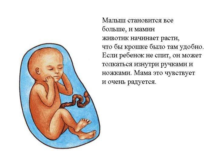 Что чувствует малыш в утробе, когда мама плачет или переживает? как эти эмоции могут повлиять на него?
