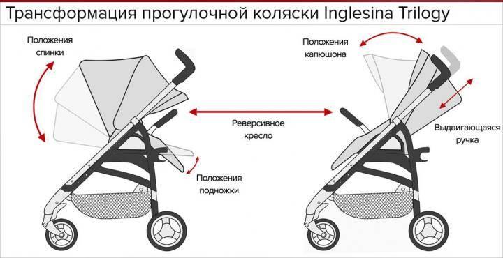 Как правильно выбрать прогулочную коляску-книжку для ребенка?