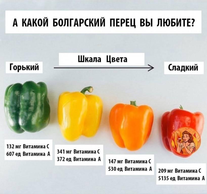 Болгарский перец для детей: польза и вред