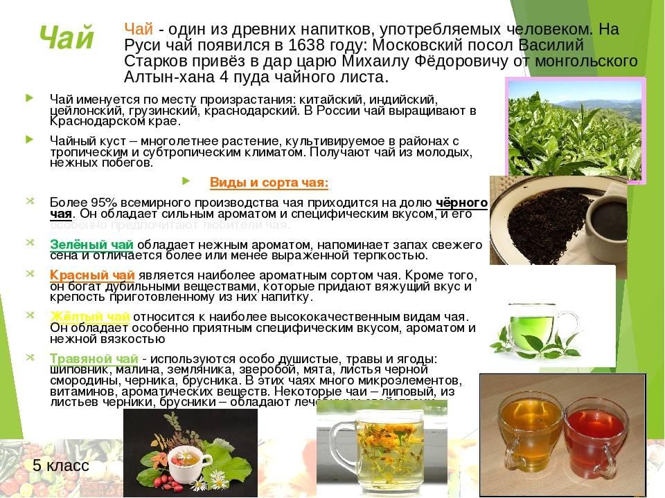 Успокаивающий чай для грудничков
