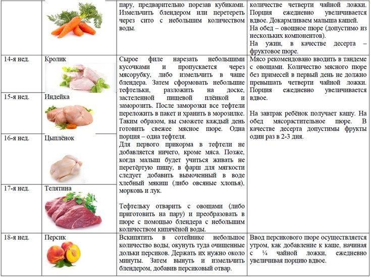 Введение прикорма: морковь- энциклопедия детское питание