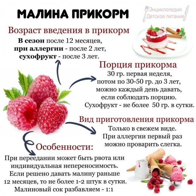Ароматная и вкусная ягода малина — особенности её употребления при грудном вскармливании мамой и ребенком