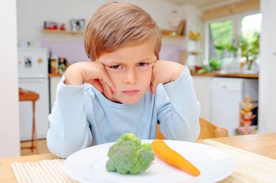 Ребенок не ест мясо- энциклопедия детское питание