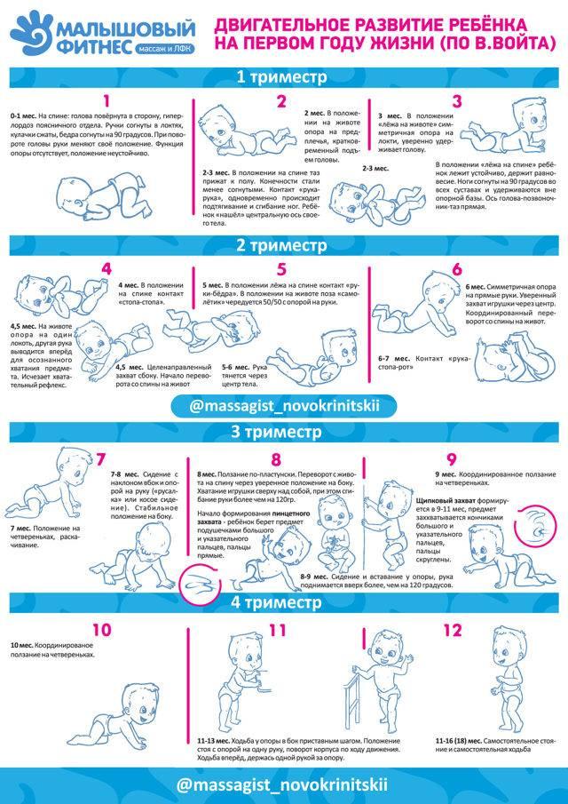 Ребенку 6 месяцев, что должен уметь, развитие, питание, сон, вес и рост