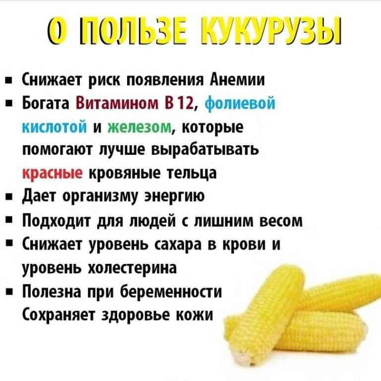Вареная кукуруза детям