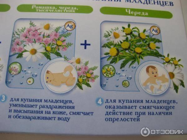 Ванночка от высыпаний у новорожденного: череда для купания, и как ее правильно заваривать