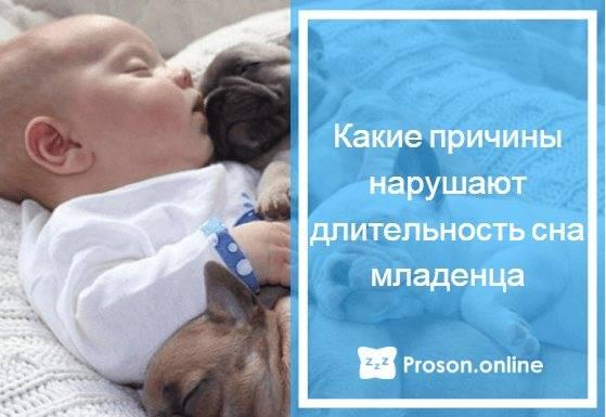 Доктор комаровский видео сон ребенка