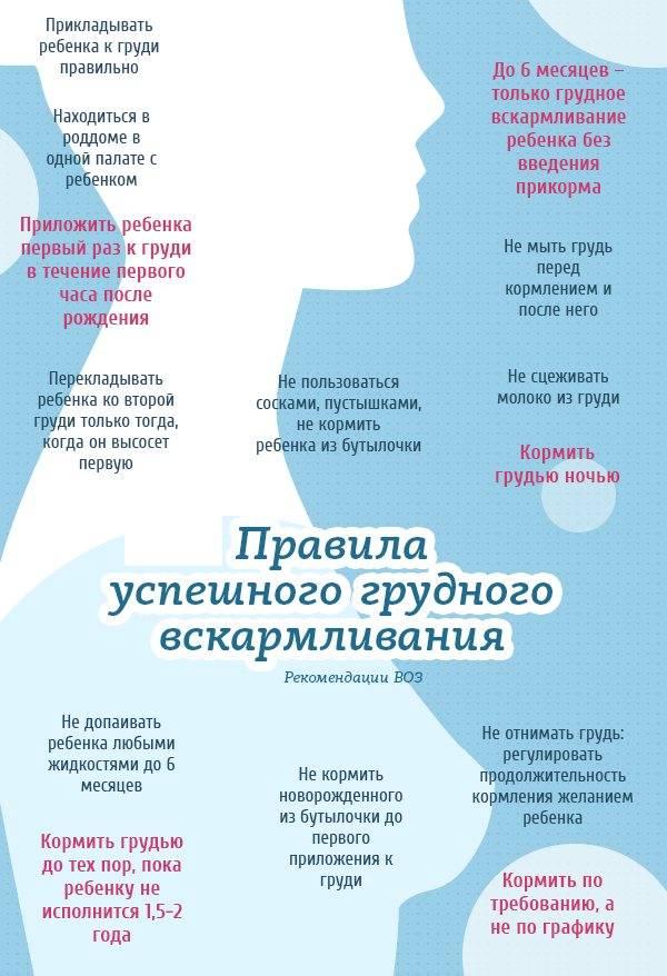 Главные правила кормления грудью