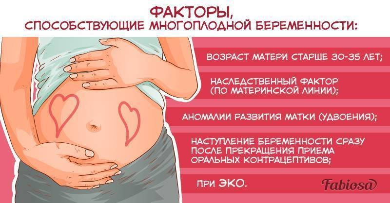 Двойня при процедуре эко: возможна ли многоплодная беременность?