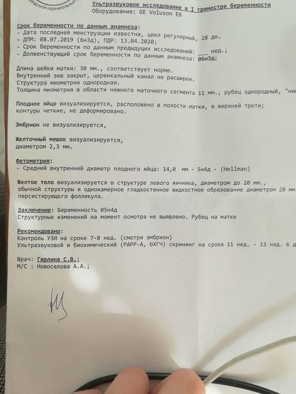 Желточный мешок при беременности: норма, размеры по неделям stomatvrn.ru