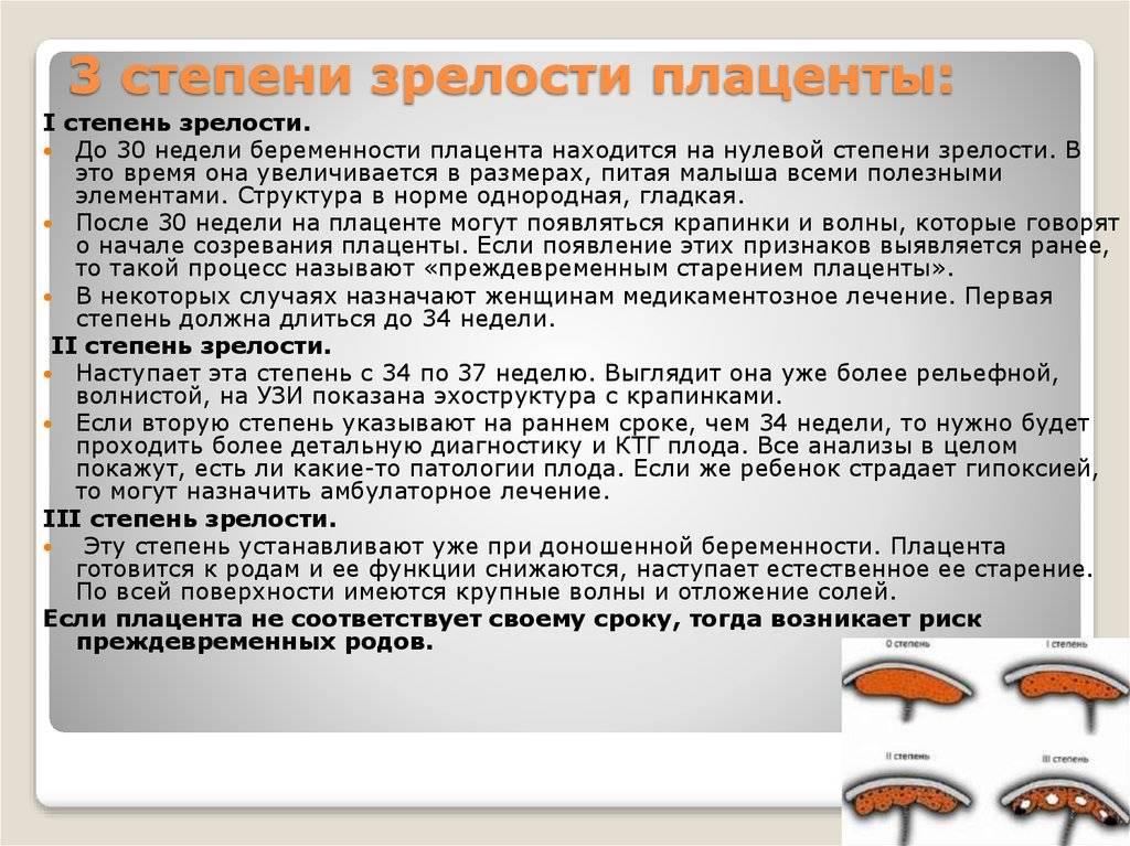 ᐉ когда сформировывается плацента. как происходит созревание плаценты во время беременности - ➡ sp-kupavna.ru