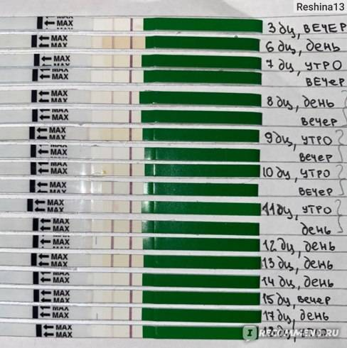 Через сколько после зачатия тест покажет беременность: сроки, советы, отзывы