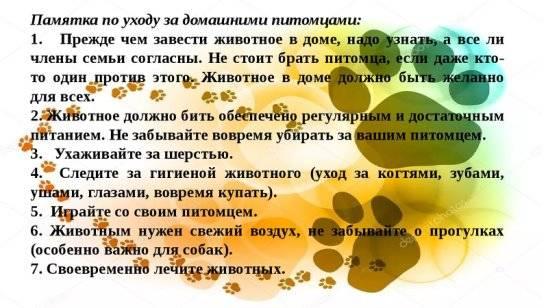 Подготовка к беременности – с чего начать и как подготовиться к беременности после 35 лет - agulife.ru