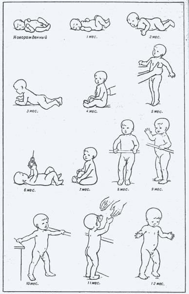 Во сколько месяцев ребенок должен начать ползать: когда мальчики и девочки