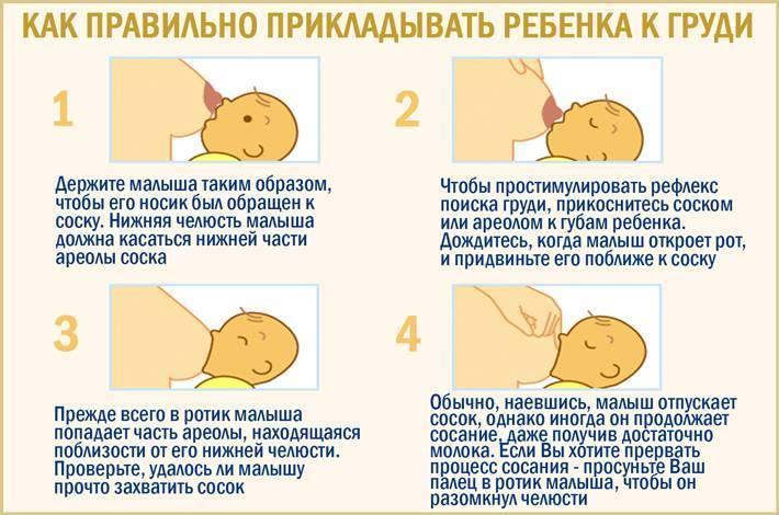 Грудное вскармливание новорожденных.   центр аналитической психологии