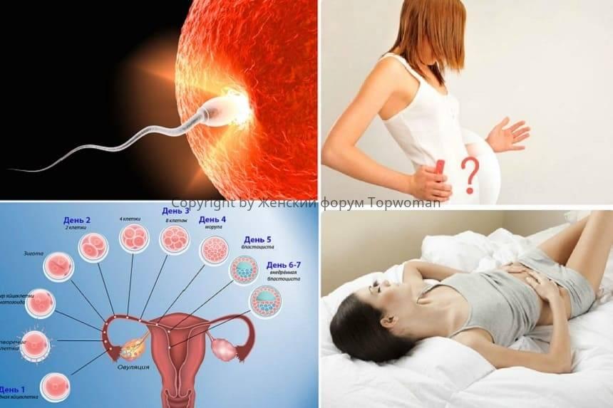 Что значат щелчки в животе при беременности: причины, диагностика. щелчки в животе при беременности на поздних сроках — что делать — беременность