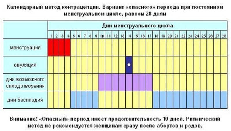 Предполагаемая дата зачатия. акушерский срок беременности.