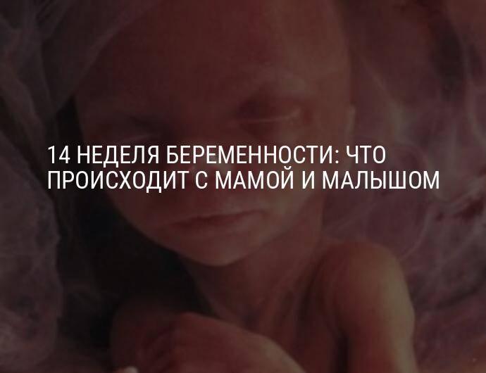 Брадикардия плода при беременности: насколько опасна и что делать?