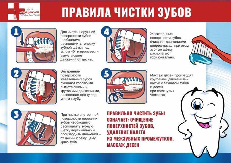 Когда начинать чистить зубы ребенку? | активная мама