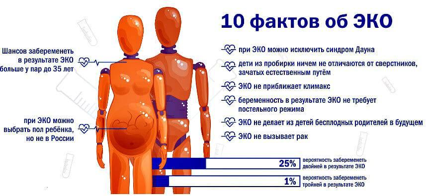 Беременность после 40 лет. насколько это безопасно? как к ней подготовиться? | аборт в спб беременность после 40 лет. насколько это безопасно? как к ней подготовиться? | аборт в спб