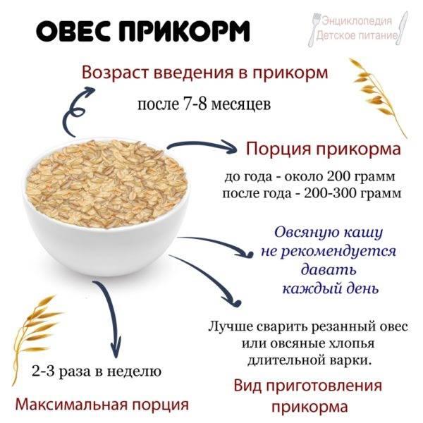Как приготовить кашу для первого прикорма: варим кашу для грудничка своими руками