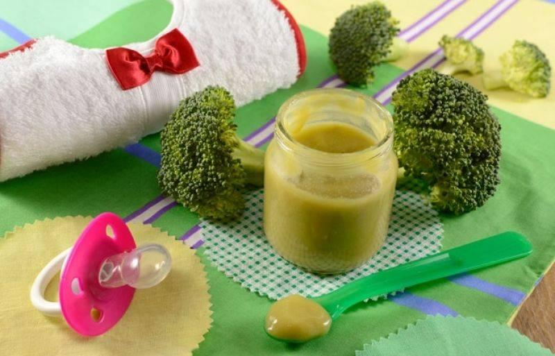 Как приготовить пюре из брокколи для грудничка - всё о грудничках