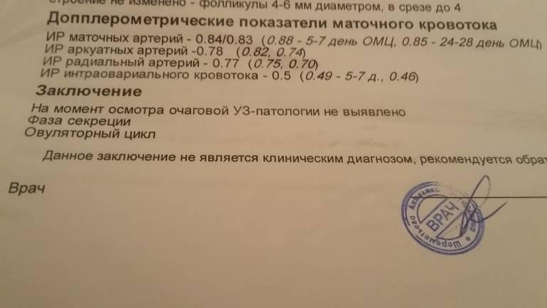 Допплерометрия при беременности - цены в клинике семейный доктор, москва