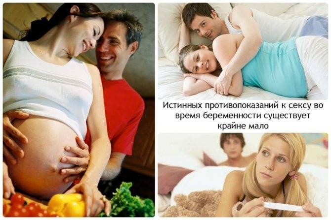 Можно ли заниматься интимной жизнью во время беременности на ранних и поздних сроках?