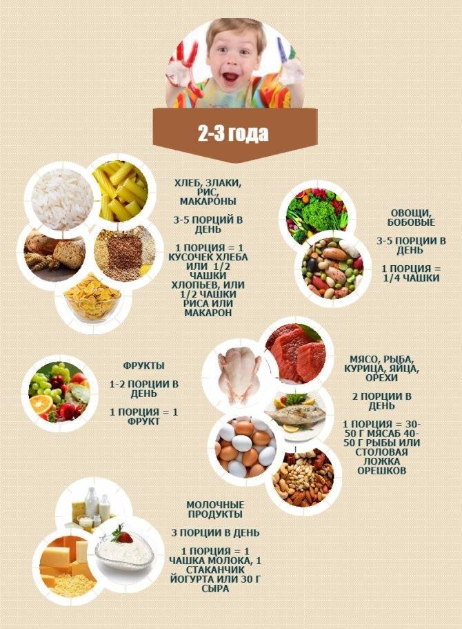 Меню для ребенка 2 года жизни: требования и перечень блюд