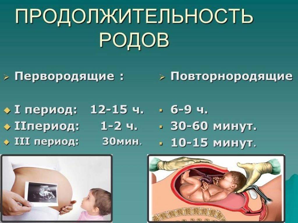 Доношенный ребенок: сколько недель должен быть срок беременности, чтобы он считался готовым к родам? - умный врач