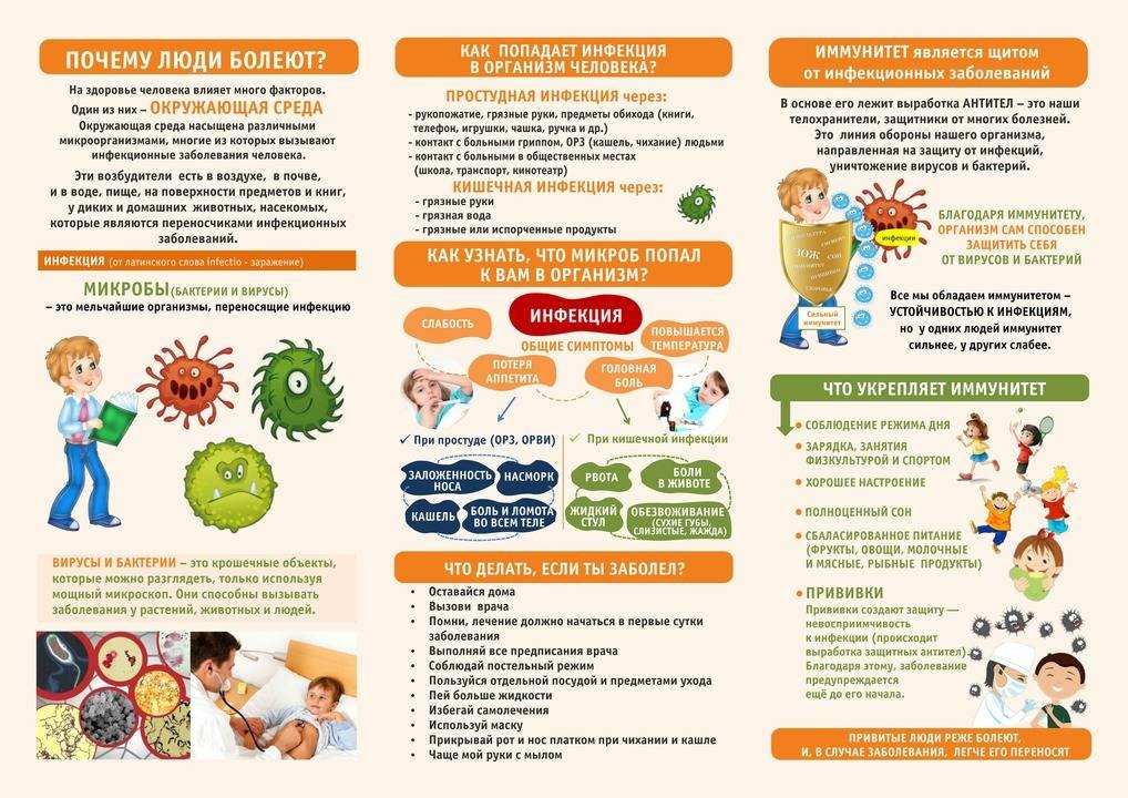 Профилактика ротавируса на море: 12 способов отдохнуть без инфекции