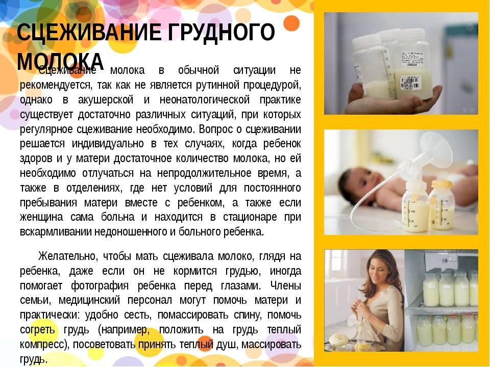 Как часто нужно сцеживать грудное молоко: при кормлении грудью для увеличения лактации и сохранения грудного вскармливания