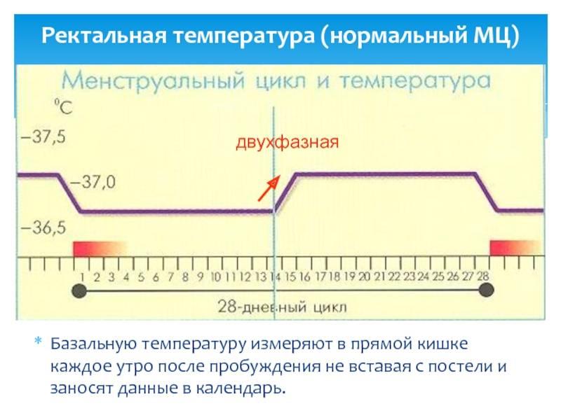 Какая температура тела человека считается нормальной