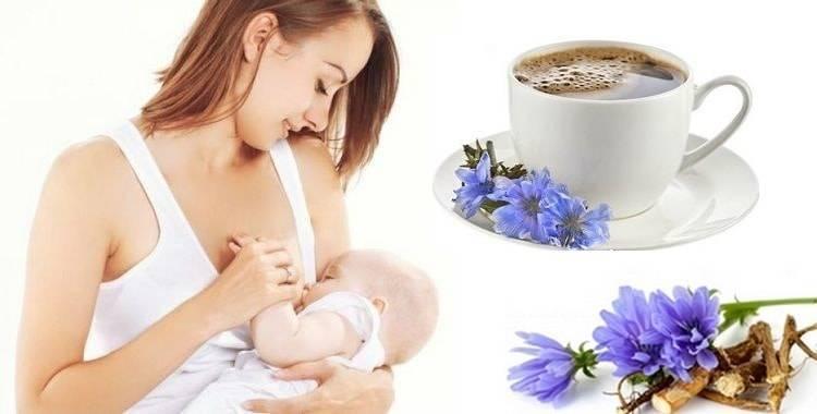 Ромашка при грудном вскармливании. чай из ромашки: польза и вред