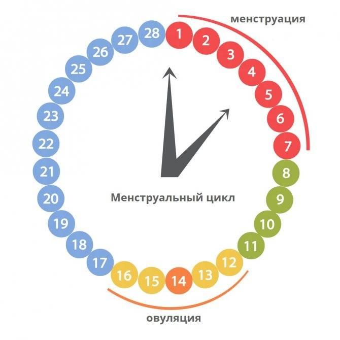 Топ-15 препаратов при цистите - рейтинг хороших средств 2021