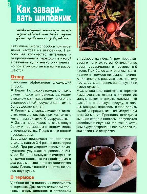 Почечный чай: описание, инструкция, цена | аптечная справочная ваше лекарство