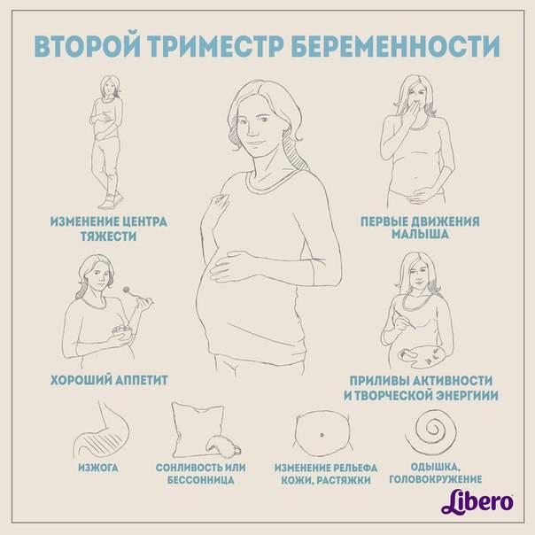 Первые действия при беременности