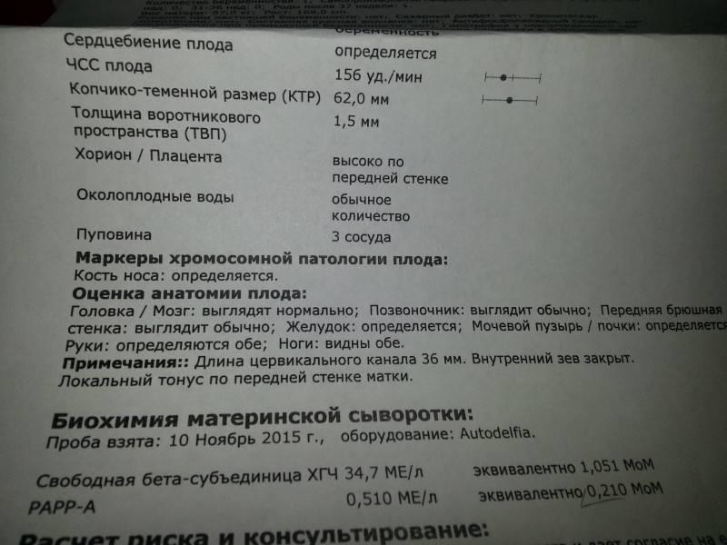 Патологии сердца плода, которые можно определить на скрининговом узи * клиника диана в санкт-петербурге