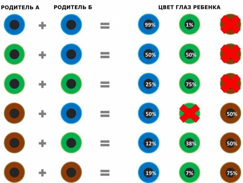 Когда меняется цвет глаз у новорожденного ребенка: что на это влияет