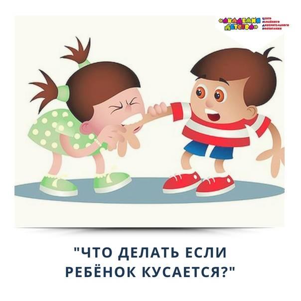 Ребенок кусается в детском саду и дома — что делать и как отучить