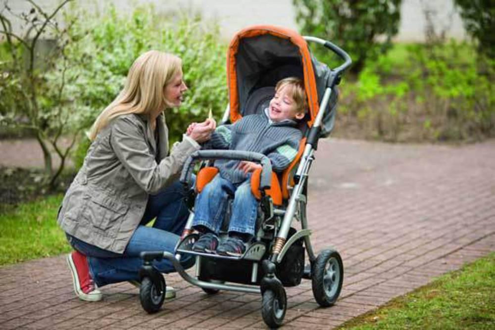 Как выбрать прогулочную коляску: трость или книжка?   konstruktor-diety.ru