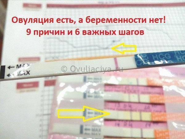Когда можно планировать беременность после перенесенного коронавируса