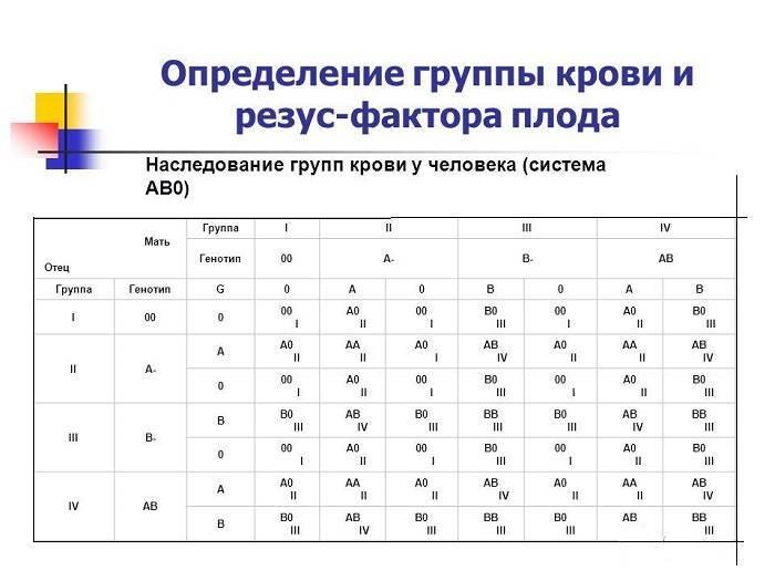 Группы крови: совместимость, определить, сочетание, резус-фактор, таблица - знай юа