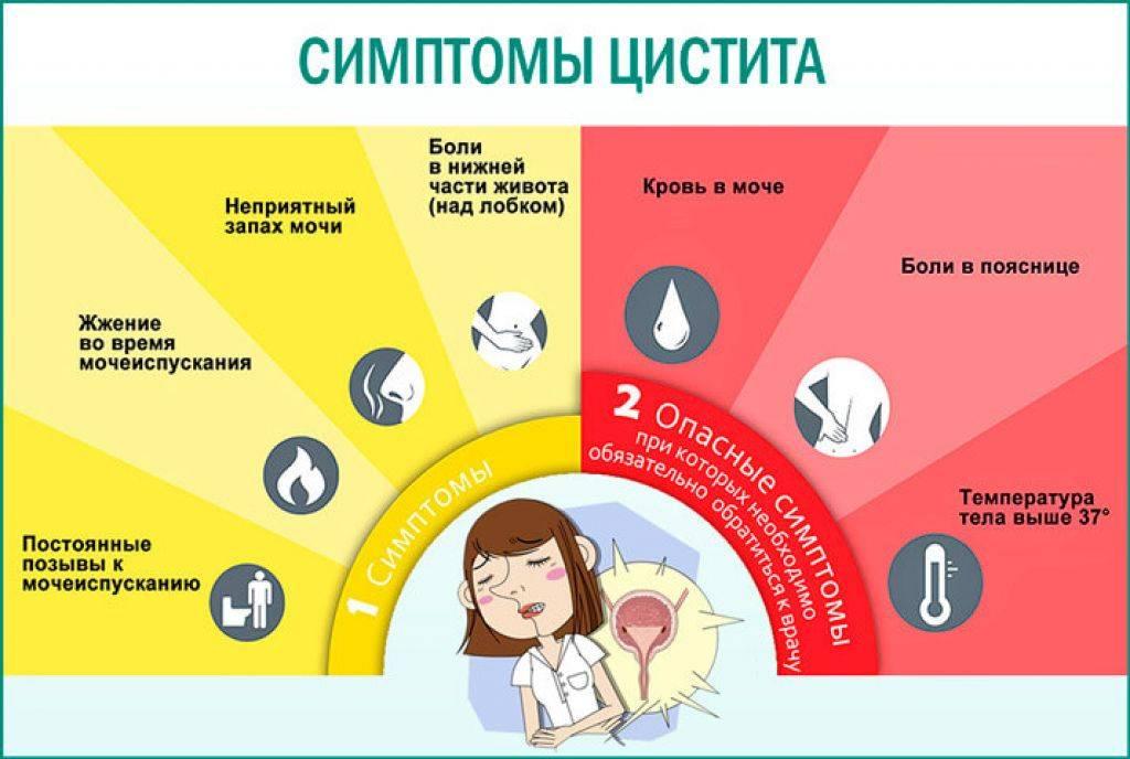 Цистит: симптомы, лечение и профилактика острого и хронического цистита в клинике «евромедпрестиж»