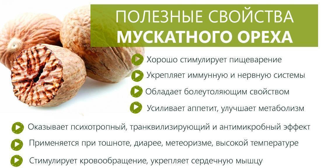 Какой урбеч (паста из семян и орехов) будет полезен беременным