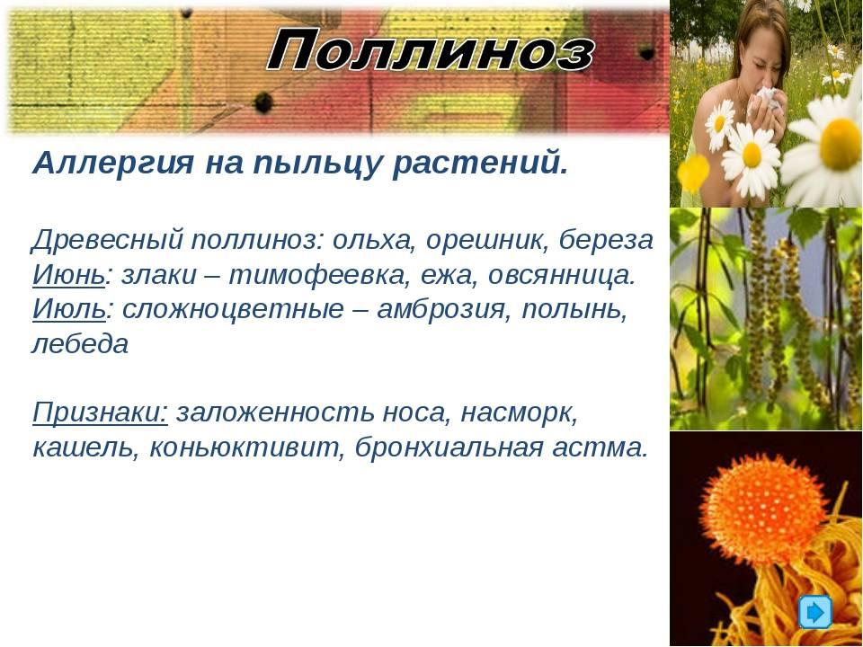 У ребенка аллергия на цветение и пыльцу растений: симптомы и лечение