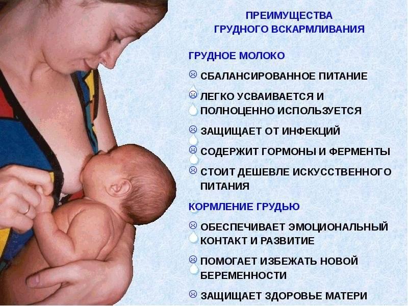 U-интервью с диетологом: окончание грудного вскармливания. полноценное питание для мамы и малыша